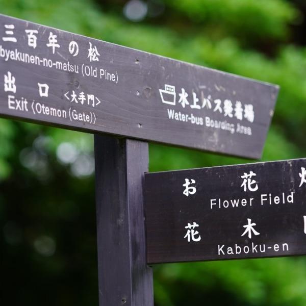 浜離宮庭園お花畑2020✨:マイナスイオン憩いの場