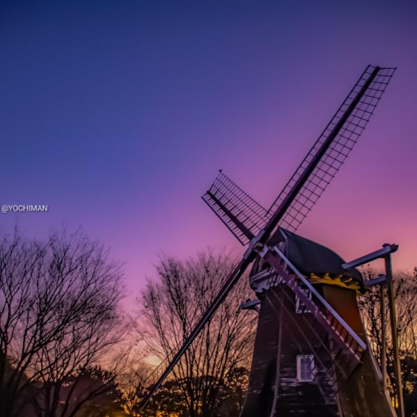 名城公園 風車