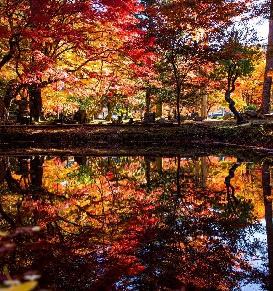 曽木公園逆さ紅葉