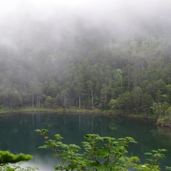 「霧の駒止湖」