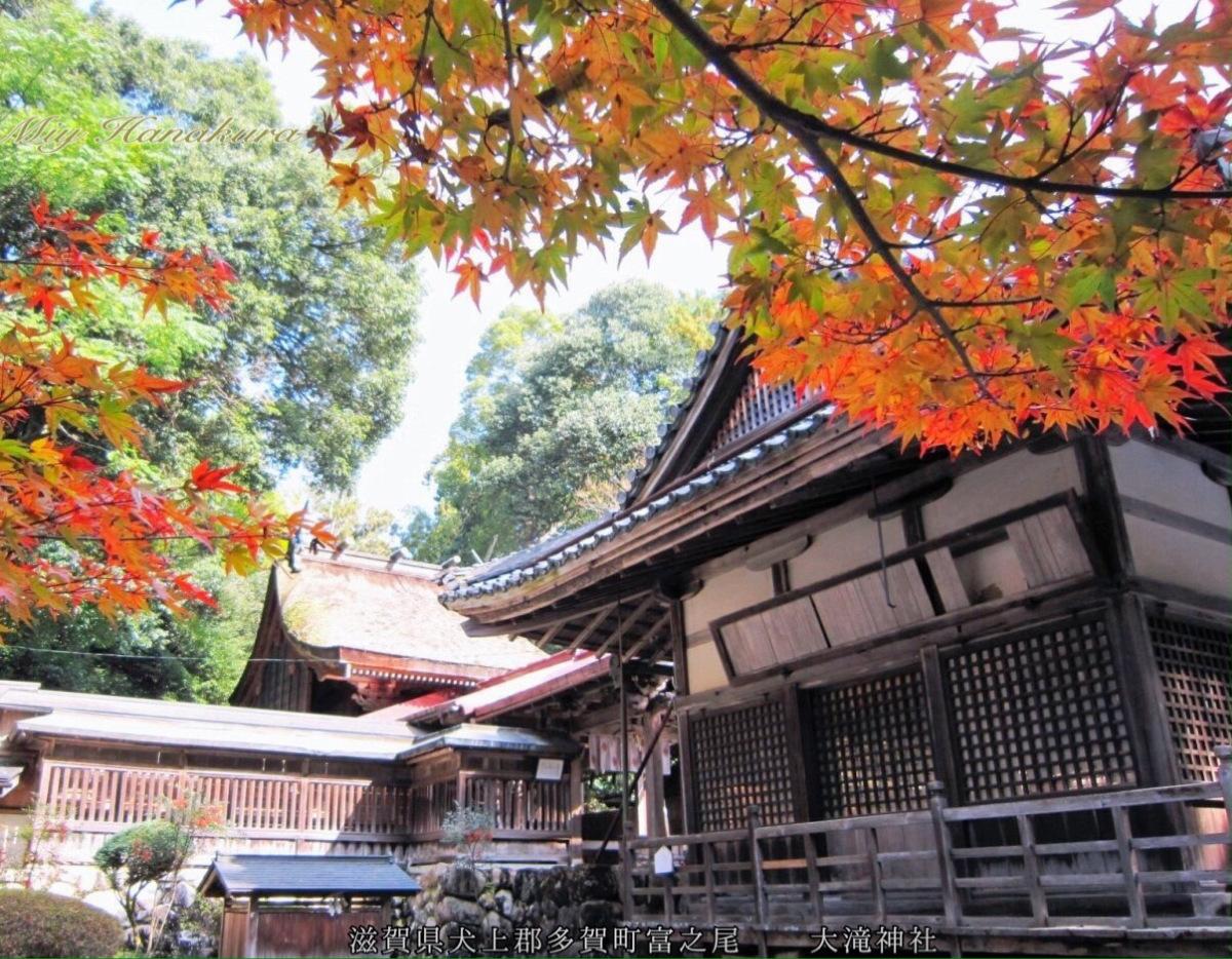 大瀧神社 ② 拝殿