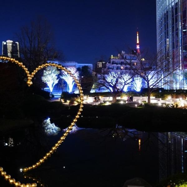 毛利庭園夜景✨東京タワーコラボ🆒