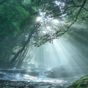 菊池渓谷の光芒
