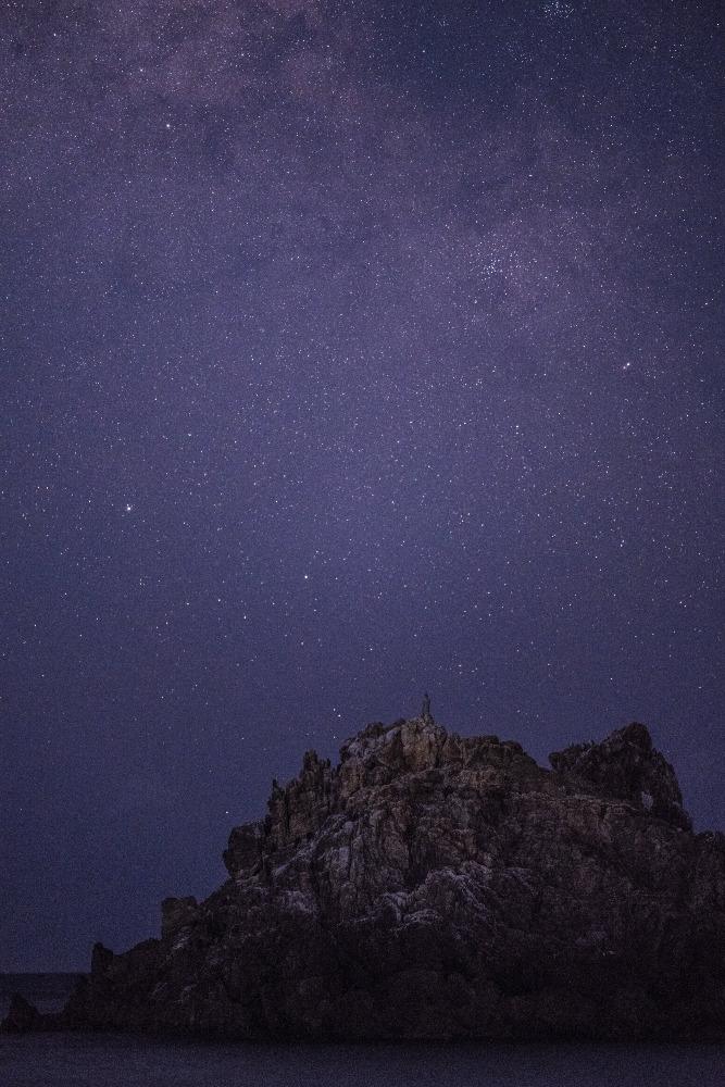 弥八島の弁天象
