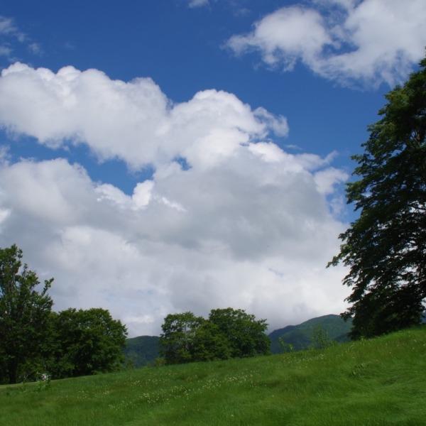 「夏空の雲」