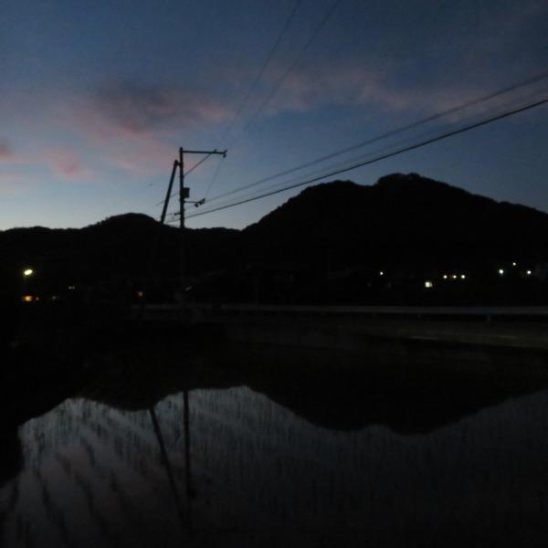 浅口市・田圃の水鏡に映る杉山