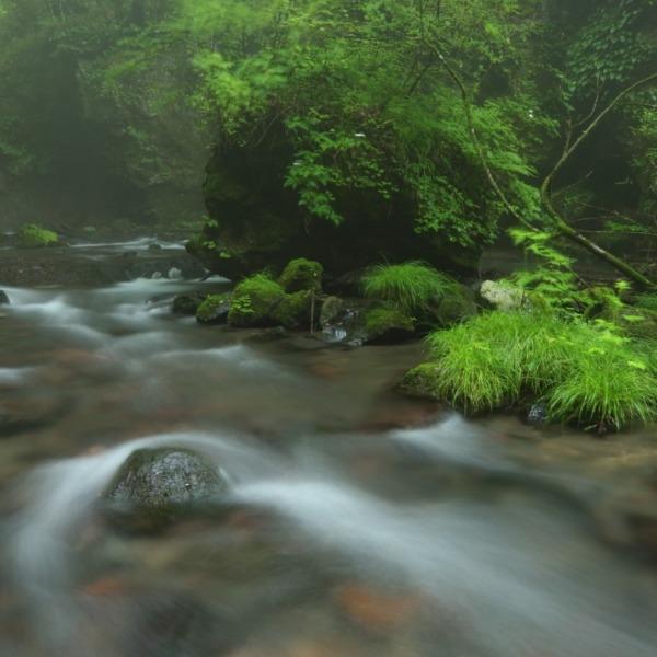 霧に煙る 滝返しの滝