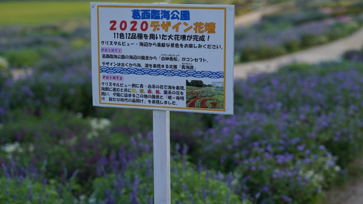2020デザイン花壇💖:葛西臨海公園✨
