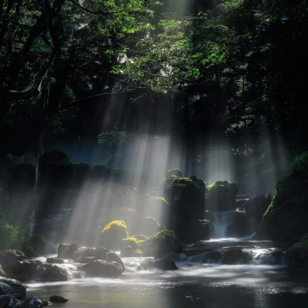 渓流と光芒