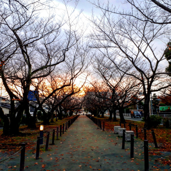 散歩道 秋ver.
