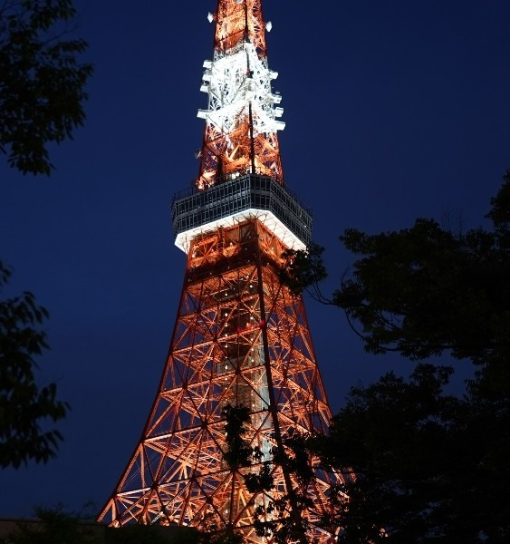 東京タワー🗼/哀愁の灯り✨