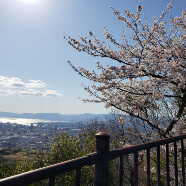 黄金山〜春の日〜