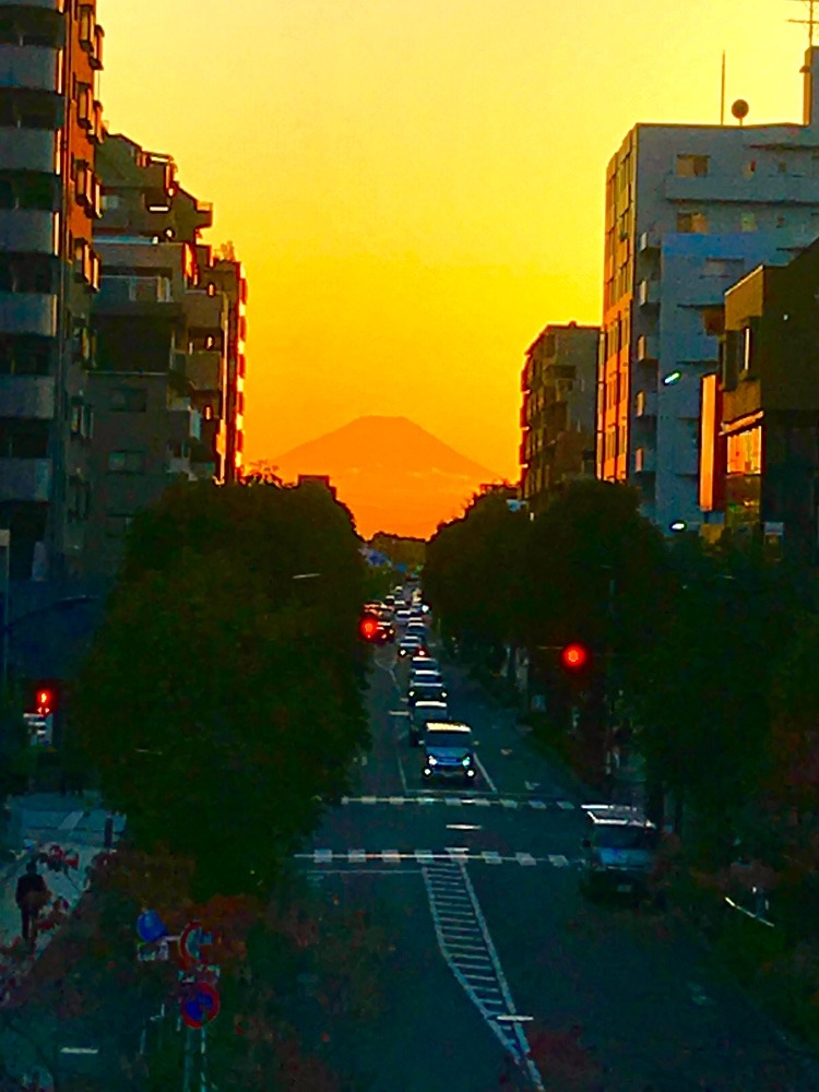 富士見テラスからの夕暮れ