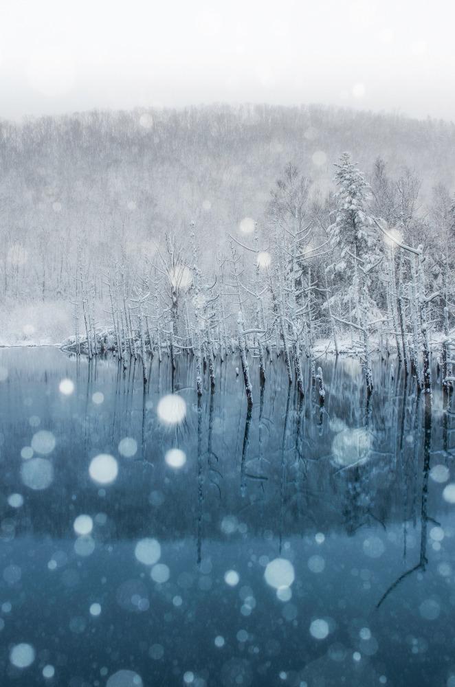 青い池の初雪