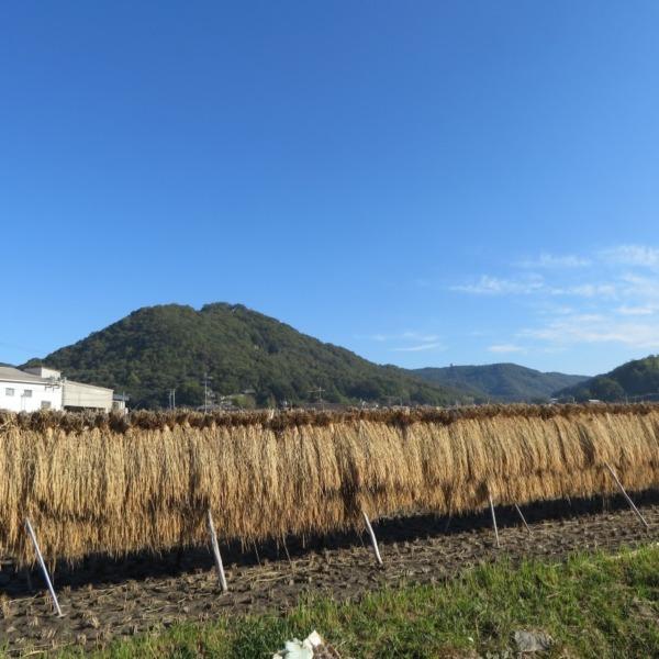 杉谷里山の風景(浅口市)