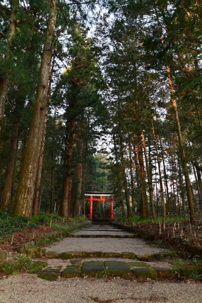 狭野神社 参道にて