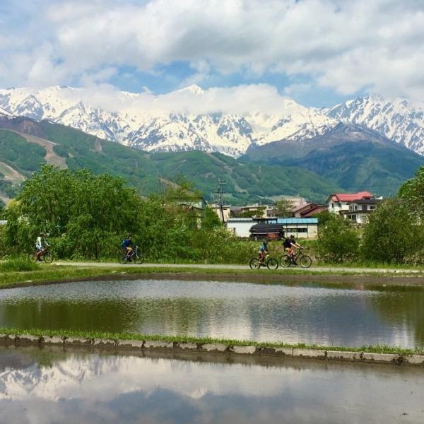 初夏の北アルプス白馬連峰