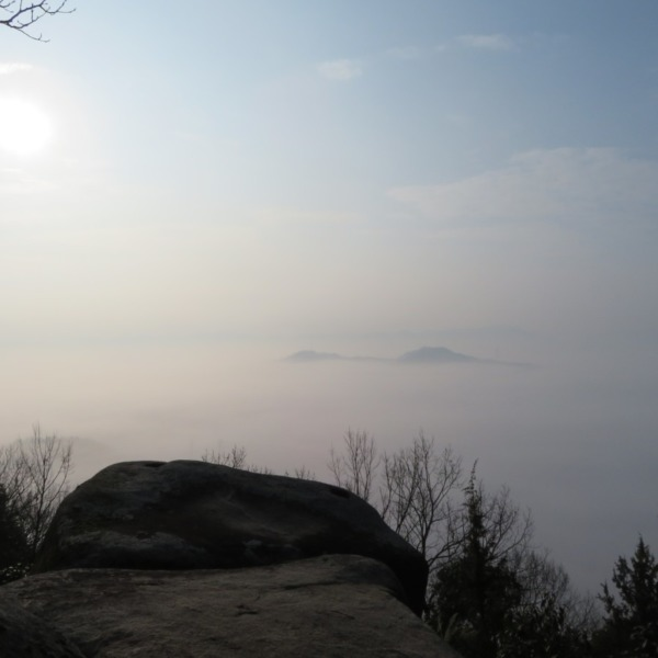 神宿る杉山からの雲海