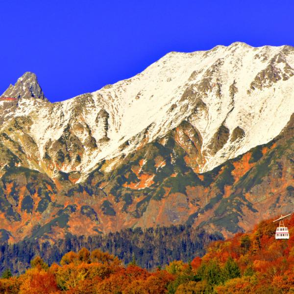 晩秋の紅葉に冠雪の槍ヶ岳