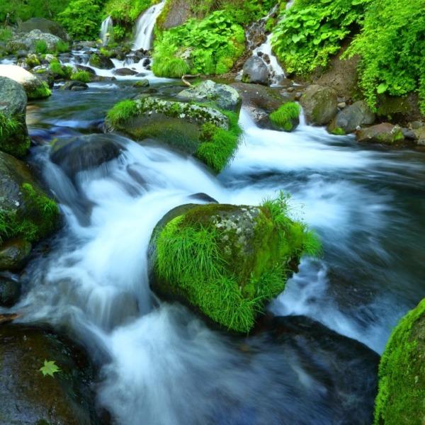 吐竜の滝 川俣川渓谷