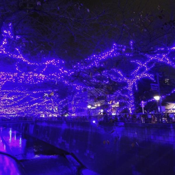 紫の 魔法