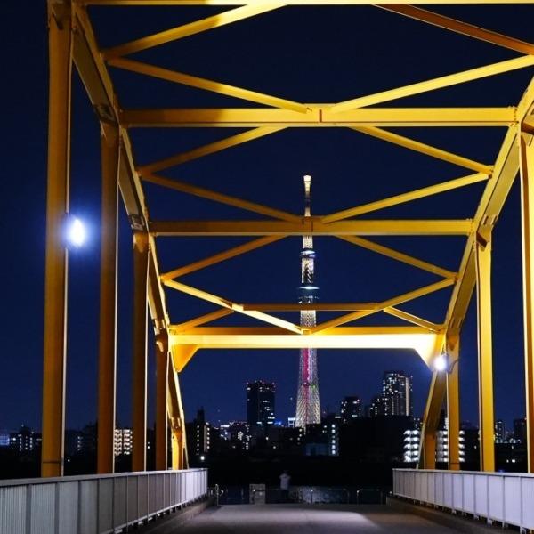 東四つ木_避難橋2021/黄色の叫び