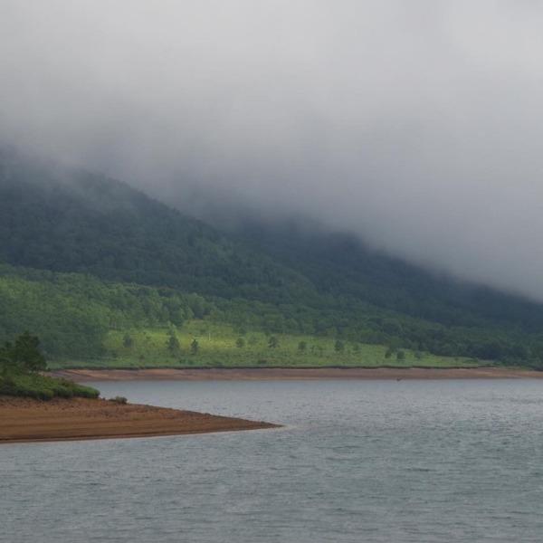 「霧の野反湖」