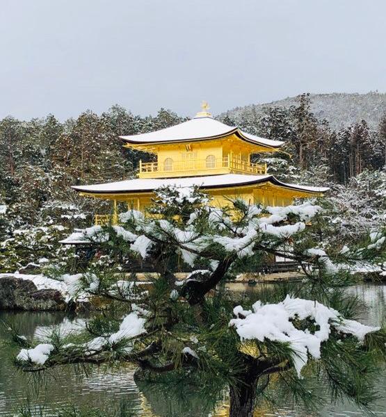 雪化粧の金閣寺