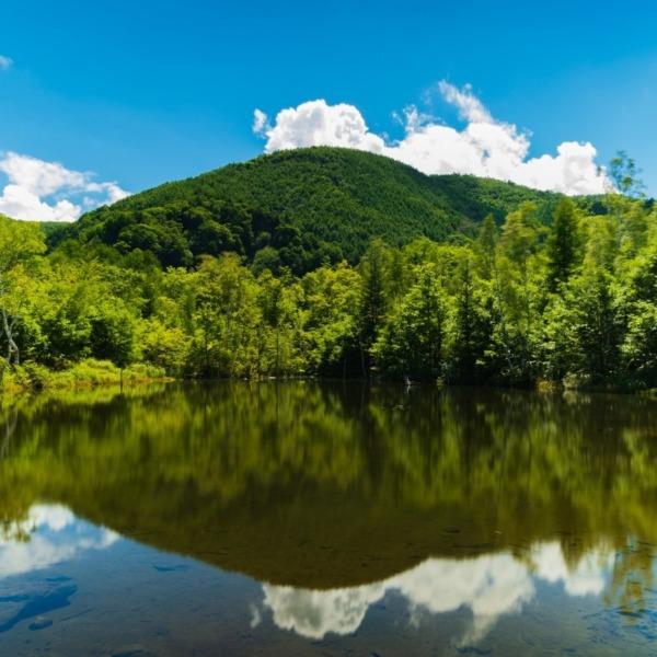 夏の乗鞍高原青空とリフレクションまいめの池