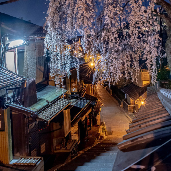 産寧坂の夜桜