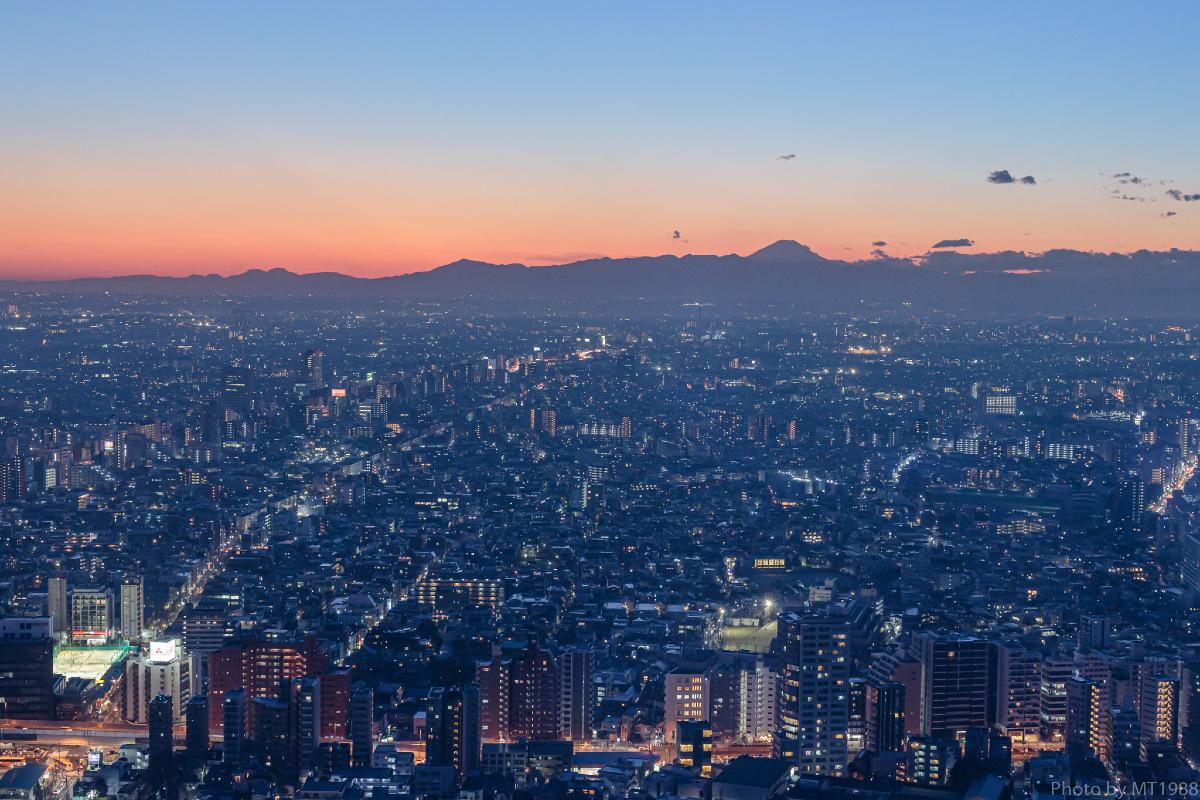 都庁からの夕景
