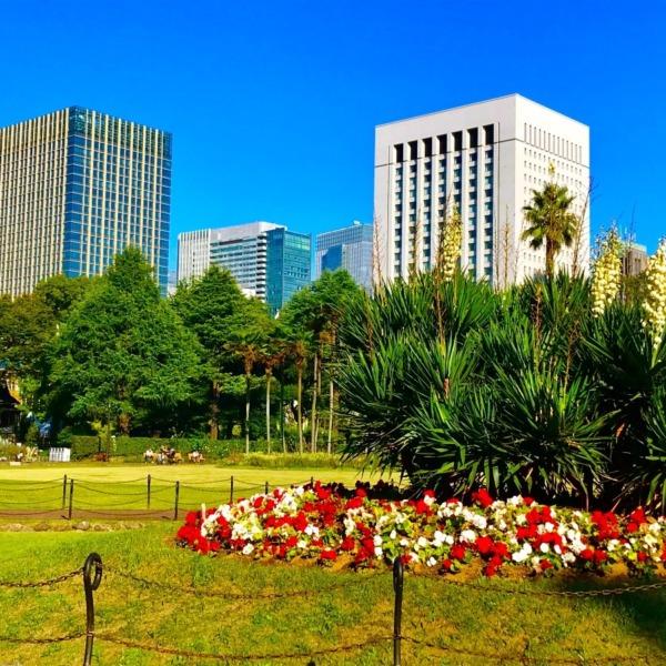 東京セントラルパーク