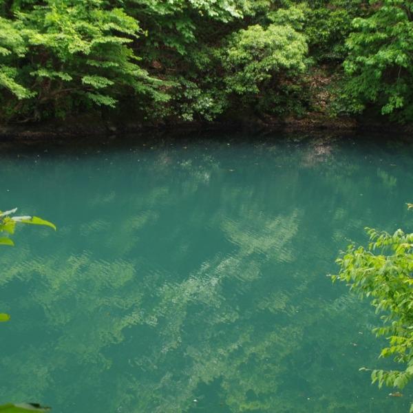 「エメラルドグリーンの水面」