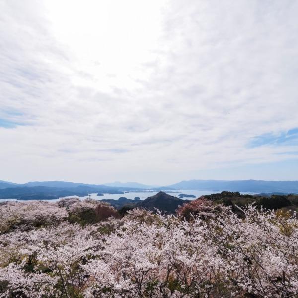 大山展望台