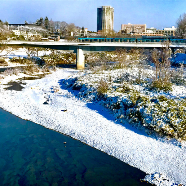 雪の広瀬川を渡る