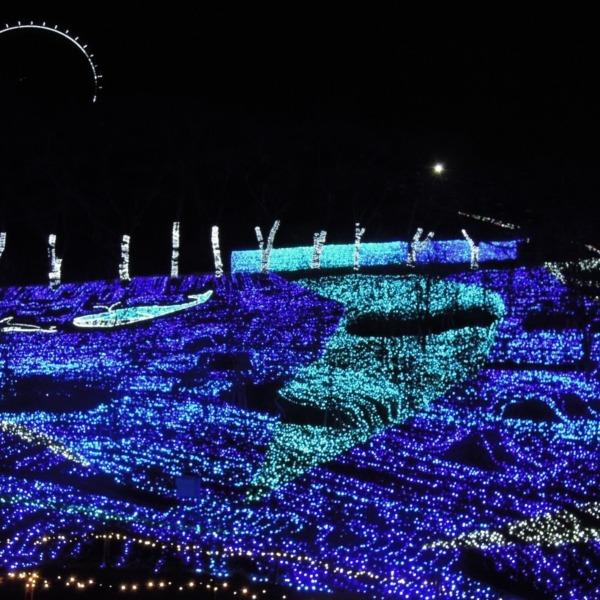 青と紫の 丘