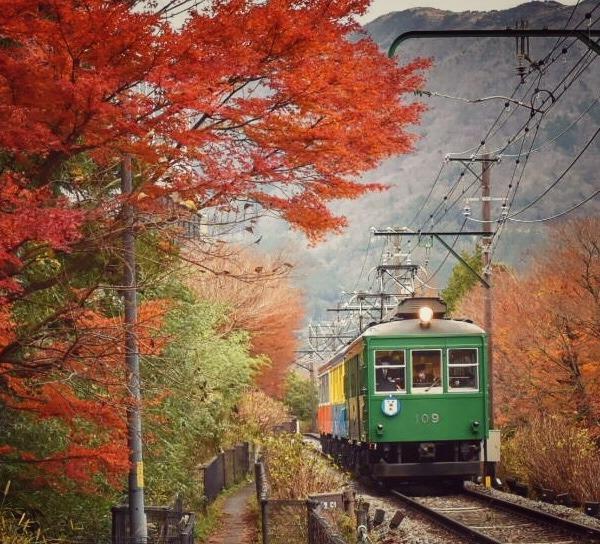 晩秋の箱根登山鉄道