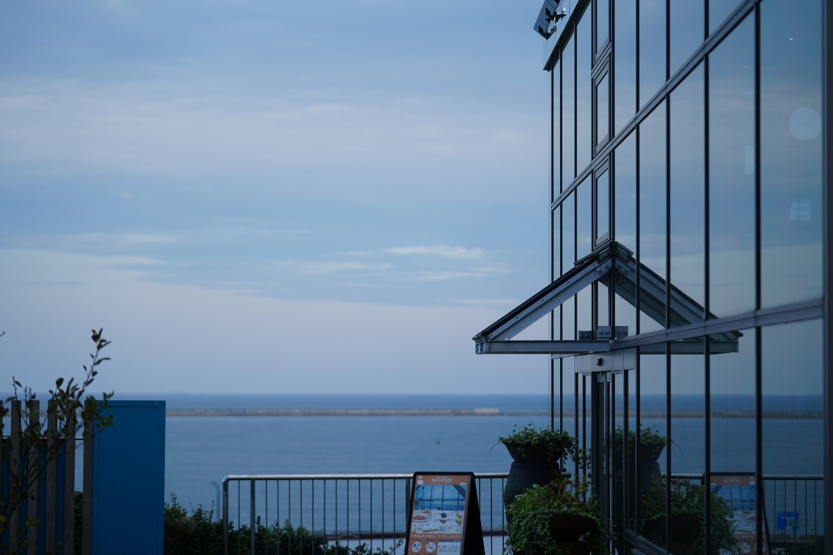ひたち海浜公園/Seaside🆒:クリスタルブルー