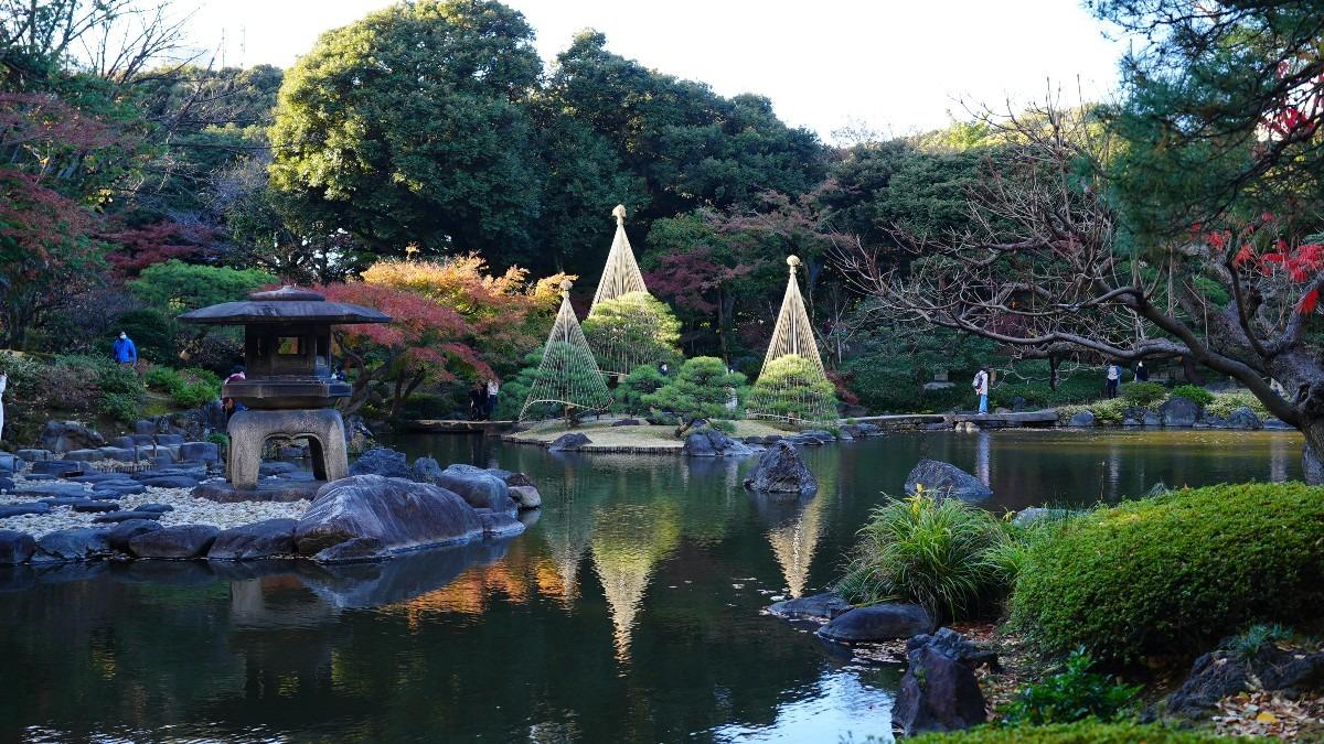 旧古河庭園の紅葉2020彩✨水面反射