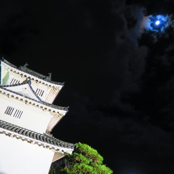 丸亀城にて