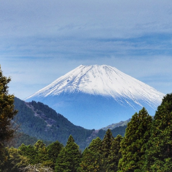 箱根園からの富士山