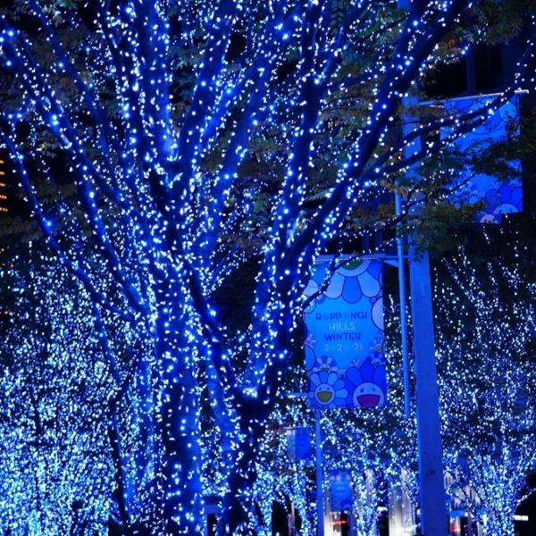 Roppongi Hills Winter2020-2021✨