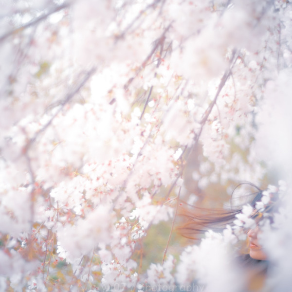 Spring was coming….